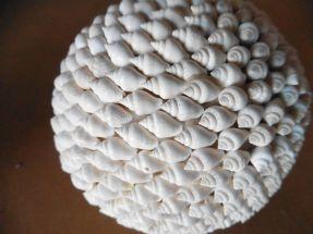 Boules en coquillage