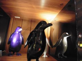 Les petits pingoins